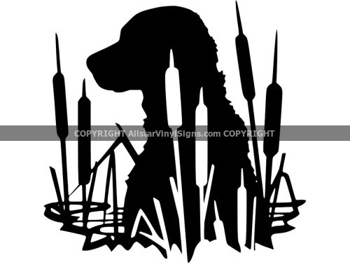 Window Decals Stickers For Cars Trucks Motorcycles